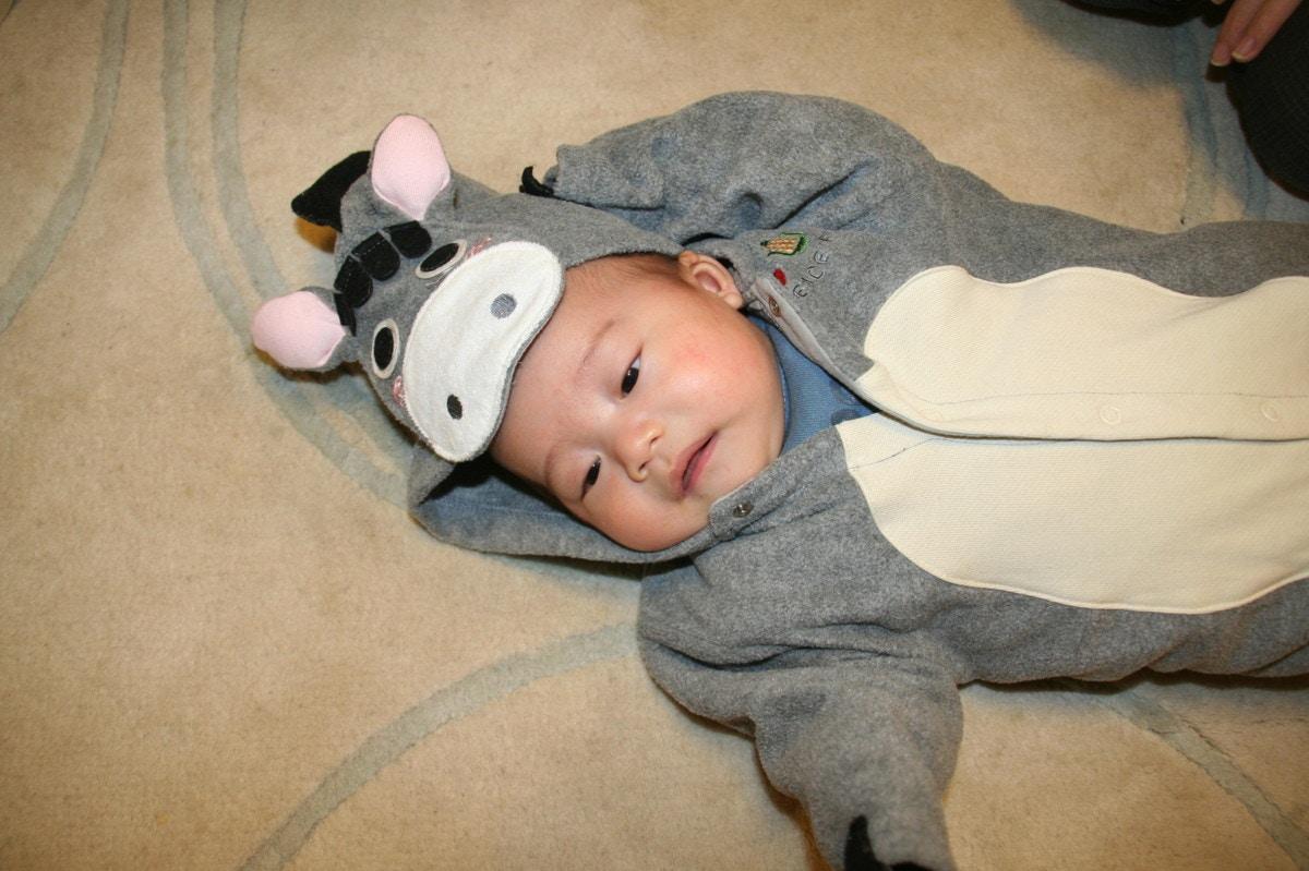 394322e251241 着ぐるみ赤ちゃんが可愛い!販売中のディズニーキャラなどおすすめ人気商品10選とダッフィーなどの着ぐるみ画像10選  ママリ