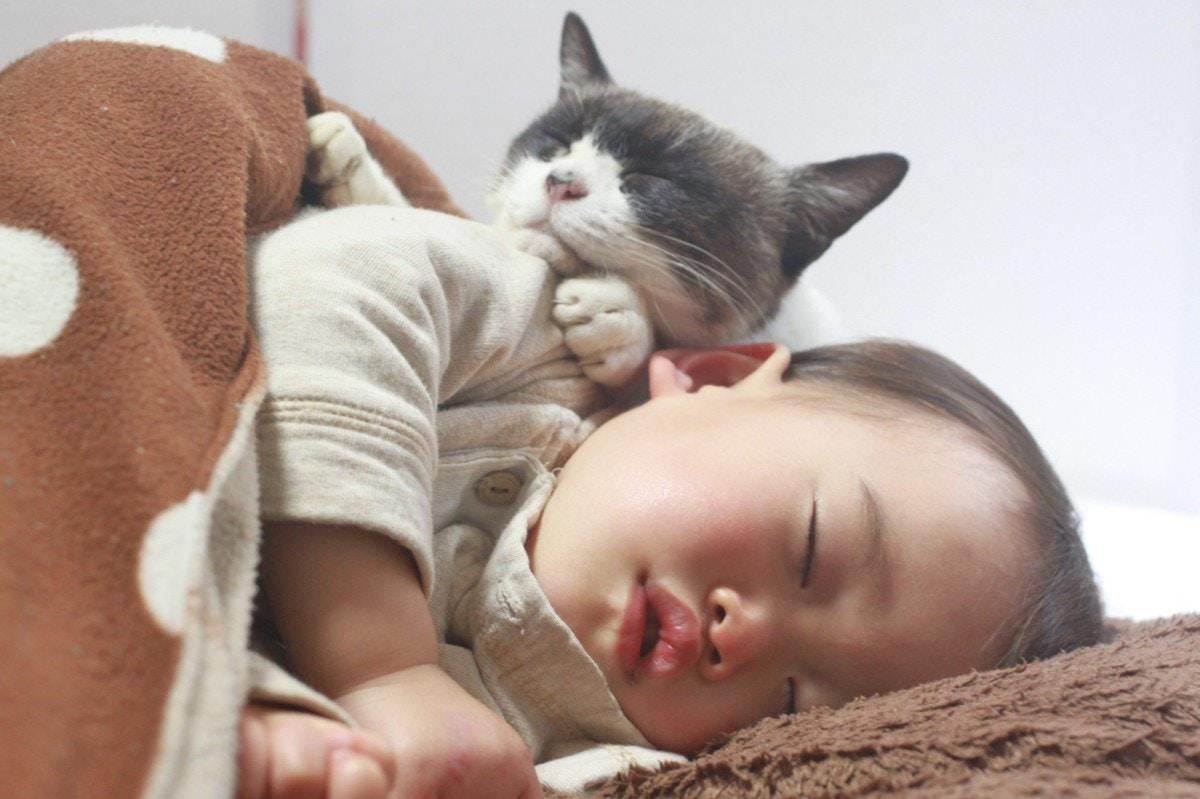時間 ヶ月 睡眠 赤ちゃん 1