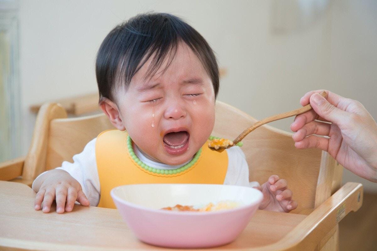 ご飯 イヤイヤ ない 期 食べ