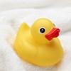お風呂のおもちゃをキレイに保つ方法と収納便利グッズをご紹介