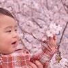 春の花を使った女の子と男の子の名前