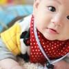 男の子ママにおすすめし たい!ニトリで作る子供部屋トータルコーディネート