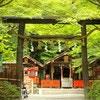 戌の日に行きたい!安産祈願で有名な京都の神社5選