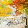 秋は子供と温泉へGO!子供におすすめの旅館・ホテル紹介【関東編】