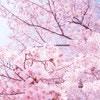 春の行楽シーズンは子連れでお出かけ!授乳室のある公園6選【東京編】