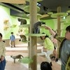 親子で楽しめる注目の大型屋内遊び場&施設3選
