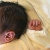 ぺこ&りゅうちぇる夫妻の「第1子誕生」から1ヶ月半! 気になるその後の育児生活は?