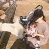 食育インストラクターの資格を取得!保田圭さんの子育ての日々を紹介