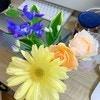 まるで魔法?小さな花を見るだけで起きた心の変化 | おうち時間の楽しみ方#7