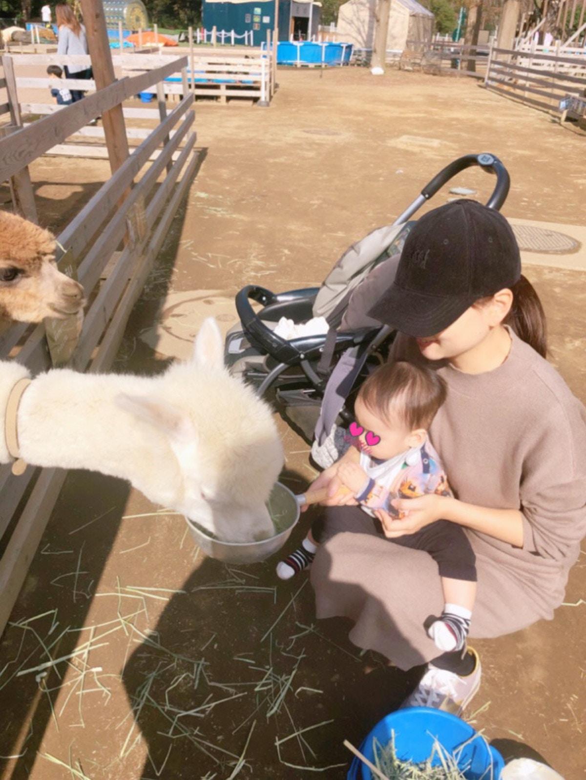 保田圭さんブログ
