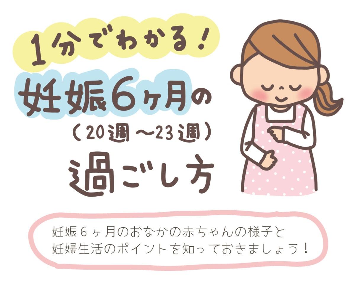妊娠 6 ヶ月 お腹 の 張り