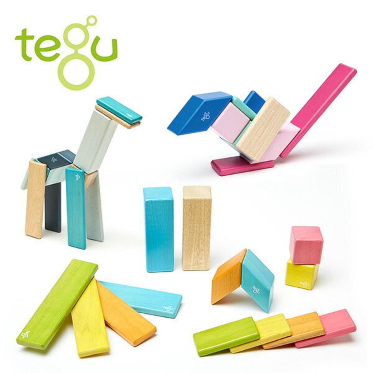 tegu(テグ)「マグネットブロック」