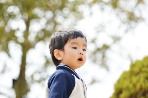 1歳 日本 男の子 遊び