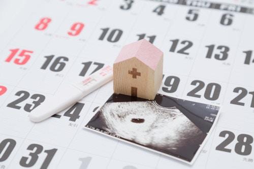 妊娠初期 エコー