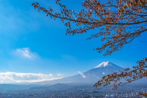 富士 山梨