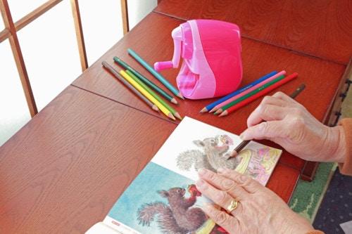 まるでアートおとなのぬりえの塗り方のコツやおすすめの色鉛筆をご紹介
