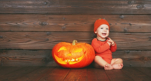 かぼちゃ 赤ちゃん