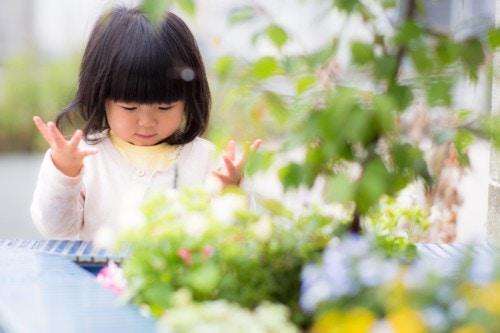 赤ちゃん 花