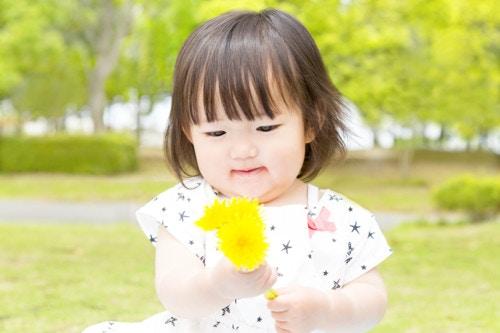 幼児 公園 黄色 日本人