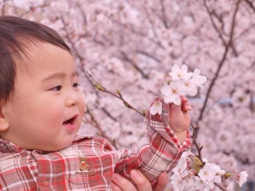 春 赤ちゃん
