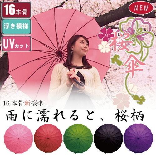 16本骨の桜傘
